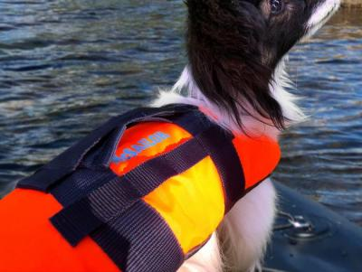 Flytväst till hund 8-15 kg, McSailor