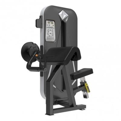 FitNord Diamond Double Biceps Extension med viktmagasin