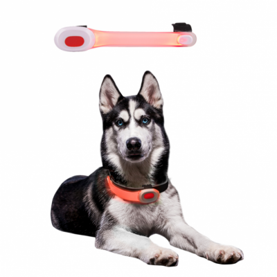 LED-ljus för hundhalsband Mini